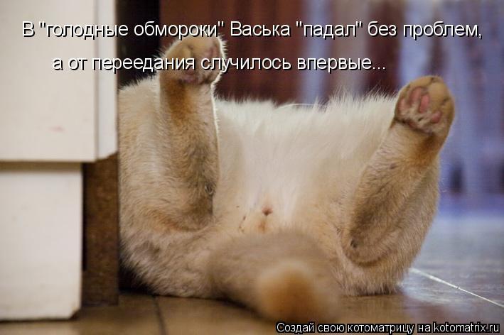 """Котоматрица: В """"голодные обмороки"""" Васька """"падал"""" без проблем,  а от переедания случилось впервые..."""