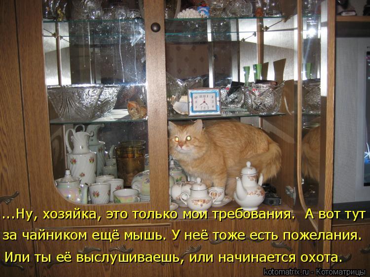 Котоматрица: ...Ну, хозяйка, это только мои требования.  А вот тут за чайником ещё мышь. У неё тоже есть пожелания. Или ты её выслушиваешь, или начинается ох?