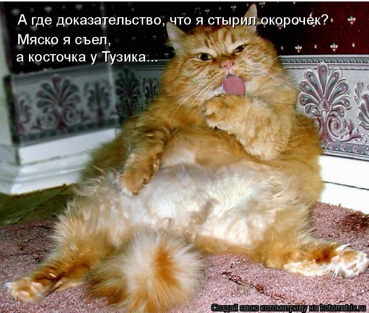 Котоматрица: А где доказательство, что я стырил окорочек? Мяско я съел,  а косточка у Тузика...