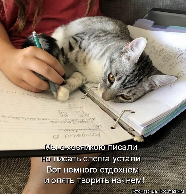 Котоматрица: и опять творить начнем! Вот немного отдохнем но писать слегка устали. Мы с хозяйкою писали