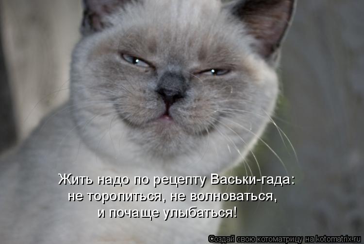 Котоматрица: Жить надо по рецепту Васьки-гада: не торопиться, не волноваться,  и почаще улыбаться!