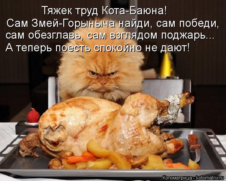 Котоматрица: Тяжек труд Кота-Баюна! Сам Змей-Горыныча найди, сам победи,  сам обезглавь, сам взглядом поджарь... А теперь поесть спокойно не дают!