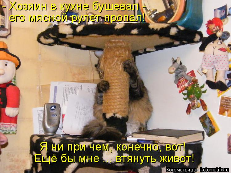 Котоматрица: - Хозяин в кухне бушевал - его мясной рулет пропал! Я ни при чем, конечно, вот! Ещё бы мне ... втянуть живот!