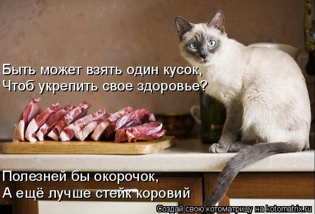 Котоматрица: Быть может взять один кусок, Чтоб укрепить свое здоровье? Полезней бы окорочок, А ещё лучше стейк коровий
