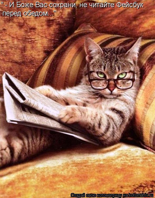 """Котоматрица: """" - И Боже Вас сохрани, не читайте Фейсбук перед обедом..."""""""
