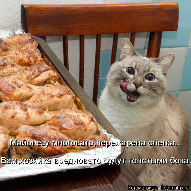 Котоматрица: Майонезу многовато,пережарена слегка... Вам,хозяйка вредновато,будут толстыми бока.