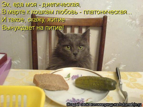 Котоматрица: Эх, еда моя - диетическая, В марте к кошкам любовь - платоническая... И такое, скажу, житие Вынуждает на питие!
