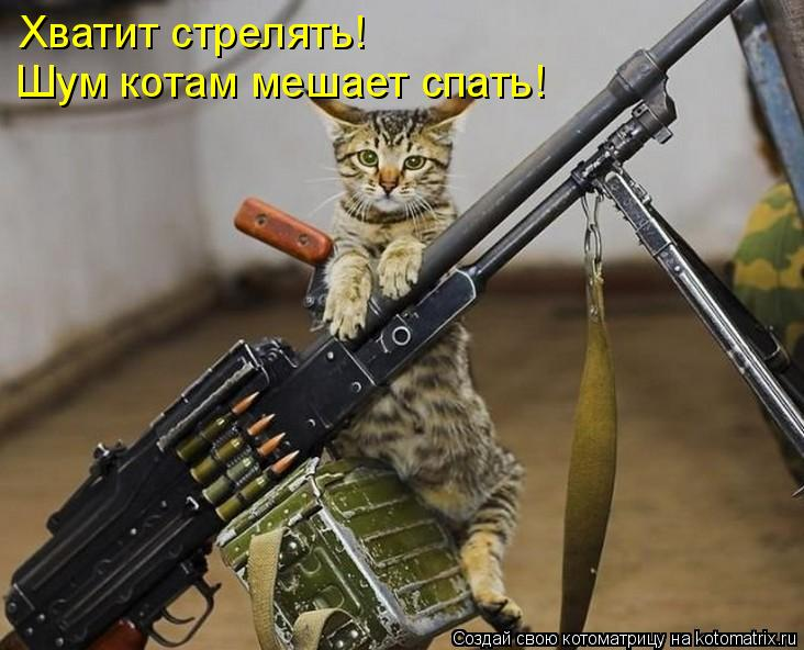 Котоматрица: Хватит стрелять! Шум котам мешает спать!