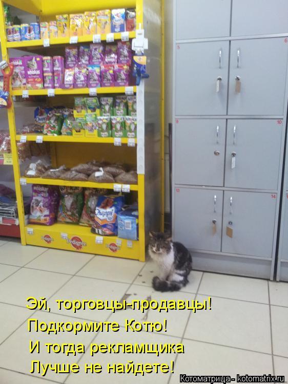 Котоматрица: Эй, торговцы-продавцы! Подкормите Котю! И тогда рекламщика Лучше не найдете!