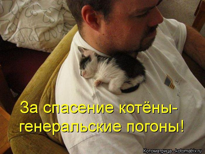 Котоматрица: За спасение котёны- генеральские погоны!