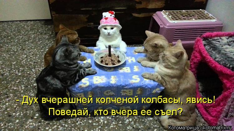 Котоматрица: - Дух вчерашней копченой колбасы, явись! Поведай, кто вчера ее съел?