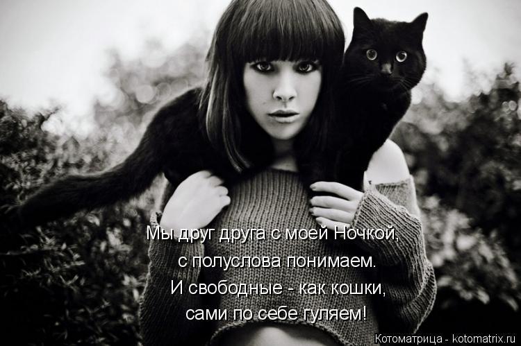 Котоматрица: с полуслова понимаем. И свободные - как кошки, сами по себе гуляем! Мы друг друга с моей Ночкой,