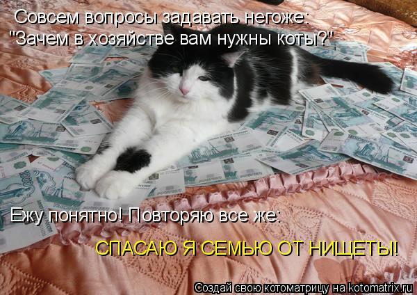 """Котоматрица: Совсем вопросы задавать негоже: """"Зачем в хозяйстве вам нужны коты?"""" Ежу понятно! Повторяю все же: СПАСАЮ Я СЕМЬЮ ОТ НИЩЕТЫ!"""