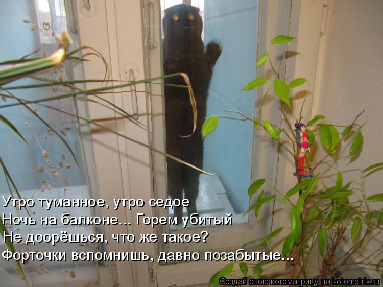 Котоматрица: Утро туманное, утро седое Ночь на балконе... Горем убитый Не доорёшься, что же такое? Форточки вспомнишь, давно позабытые...