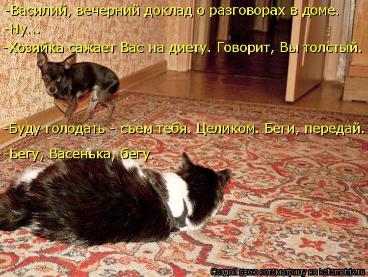 Котоматрица: -Василий, вечерний доклад о разговорах в доме. -Хозяйка сажает Вас на диету. Говорит, Вы толстый. -Ну... -Буду голодать - съем тебя. Целиком. Беги