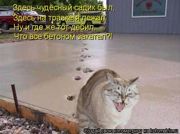 Котоматрица: Здесь чудесный садик был, Здесь на травке я лежал, Ну и где же тот дебил, Что все бетоном закатал?!