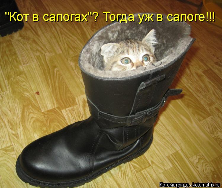 """Котоматрица: """"Кот в сапогах""""? Тогда уж в сапоге!!!"""