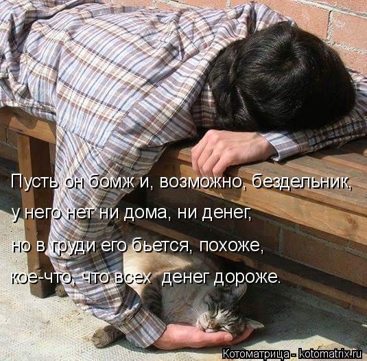 Котоматрица: Пусть он бомж и, возможно, бездельник, у него нет ни дома, ни денег, но в груди его бьется, похоже, кое-что, что всех  денег дороже.