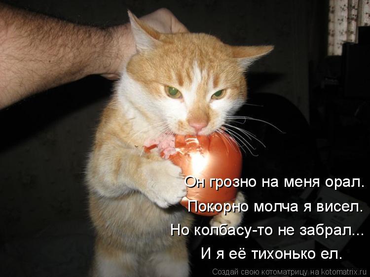 Котоматрица: Он грозно на меня орал. Покорно молча я висел. Но колбасу-то не забрал... И я её тихонько ел.
