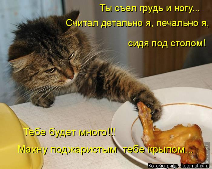 Котоматрица: Ты съел грудь и ногу... Считал детально я, печально я, сидя под столом! Тебе будет много!!! Махну поджаристым  тебе крылом...