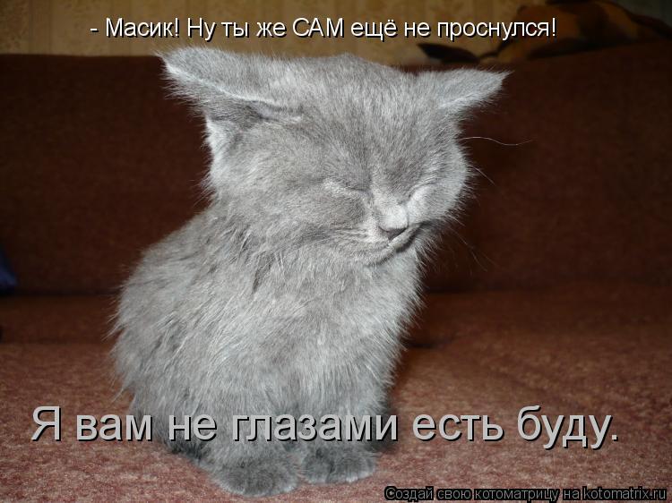 Котоматрица: - Масик! Ну ты же САМ ещё не проснулся! Я вам не глазами есть буду.