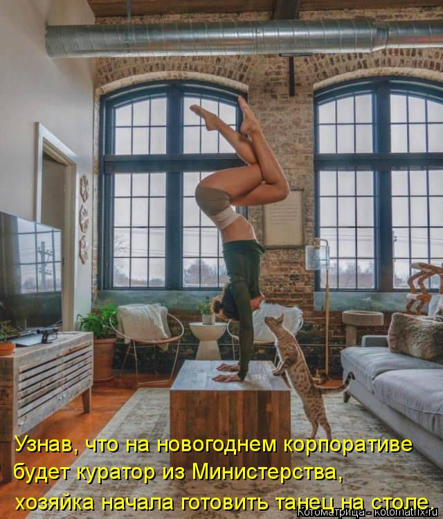 Котоматрица: Узнав, что на новогоднем корпоративе  будет куратор из Министерства,  хозяйка начала готовить танец на столе.