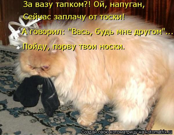 """Котоматрица: За вазу тапком?! Ой, напуган, Сейчас заплачу от тоски! А говорил: """"Вась, будь мне другом""""... Пойду, порву твои носки."""