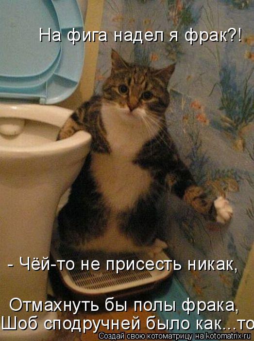 Котоматрица: - Чёй-то не присесть никак,  Отмахнуть бы полы фрака, На фига надел я фрак?! Шоб сподручней было как...то