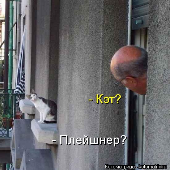 Котоматрица: - Кэт? - Плейшнер?