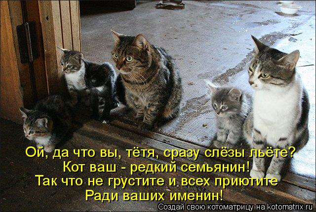 Котоматрица: Ой, да что вы, тётя, сразу слёзы льёте? Кот ваш - редкий семьянин! Так что не грустите и всех приютите Ради ваших именин!