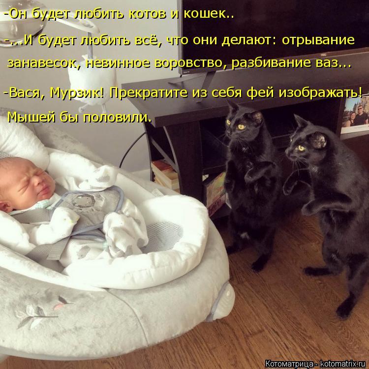 Котоматрица: -Он будет любить котов и кошек.. -...И будет любить всё, что они делают: отрывание  занавесок, невинное воровство, разбивание ваз... -Вася, Мурзик