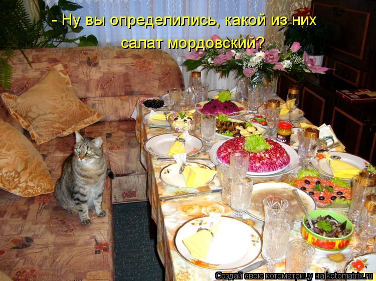 Котоматрица: - Ну вы определились, какой из них салат мордовский?
