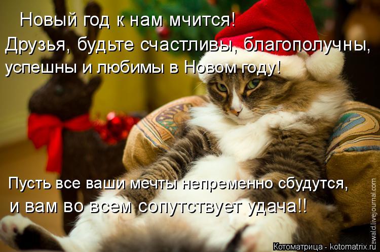 Котоматрица: Новый год к нам мчится! успешны и любимы в Новом году! Пусть все ваши мечты непременно сбудутся, Друзья, будьте счастливы, благополучны,  и ва