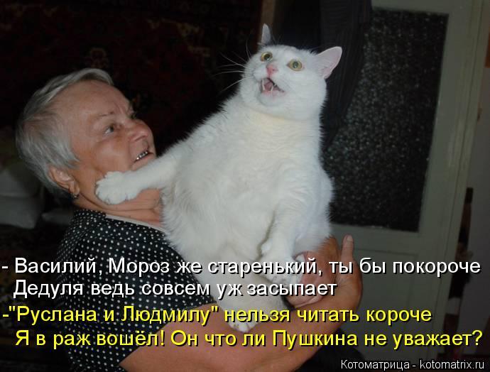"""Котоматрица: - Василий, Мороз же старенький, ты бы покороче Дедуля ведь совсем уж засыпает  -""""Руслана и Людмилу"""" нельзя читать короче Я в раж вошёл! Он что л"""