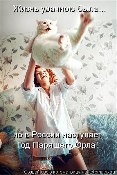 Котоматрица: Жизнь удачною была... но в России наступает Год Парящего Орла!