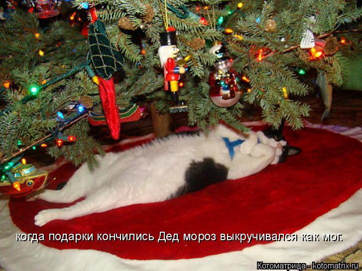 Котоматрица: когда подарки кончились Дед мороз выкручивался как мог.