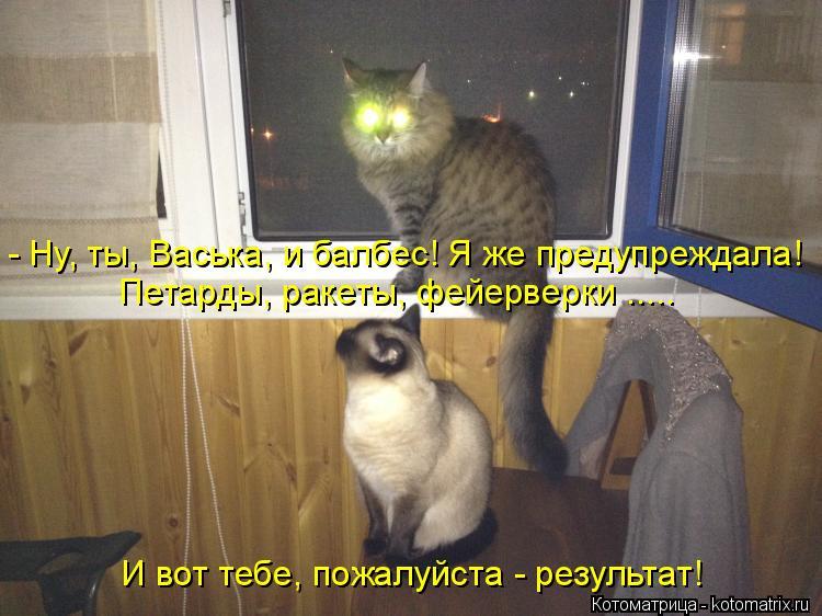 Котоматрица: - Ну, ты, Васька, и балбес! Я же предупреждала! Петарды, ракеты, фейерверки ..... И вот тебе, пожалуйста - результат!