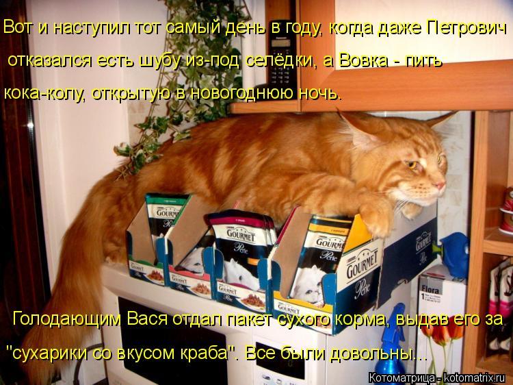 Котоматрица: Вот и наступил тот самый день в году, когда даже Петрович кока-колу, открытую в новогоднюю ночь. отказался есть шубу из-под селёдки, а Вовка -