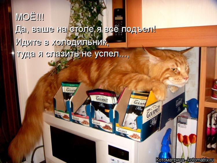 Котоматрица: МОЁ!!!  Да, ваше на столе я всё подъел! Идите в холодильник, туда я слазить не успел...,