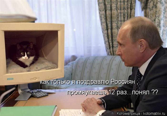 Котоматрица: как только я поздравлю Россиян , промяукаешь 12 раз...понял ??