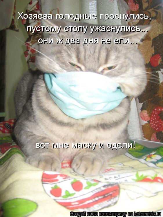 Котоматрица: Хозяева голодные проснулись, пустому столу ужаснулись... они ж два дня не ели... вот мне маску и одели!