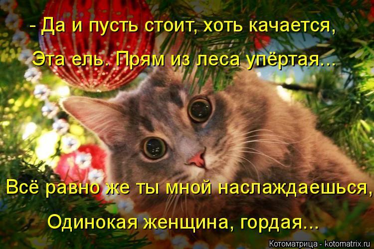 Котоматрица: - Да и пусть стоит, хоть качается, Эта ель. Прям из леса упёртая... Всё равно же ты мной наслаждаешься, Одинокая женщина, гордая...