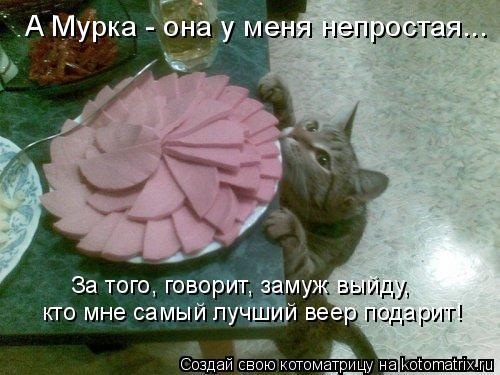 Котоматрица: За того, говорит, замуж выйду, кто мне самый лучший веер подарит! А Мурка - она у меня непростая...