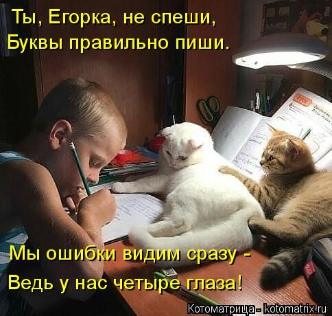 Котоматрица: Ты, Егорка, не спеши, Мы ошибки видим сразу - Ведь у нас четыре глаза! Буквы правильно пиши.