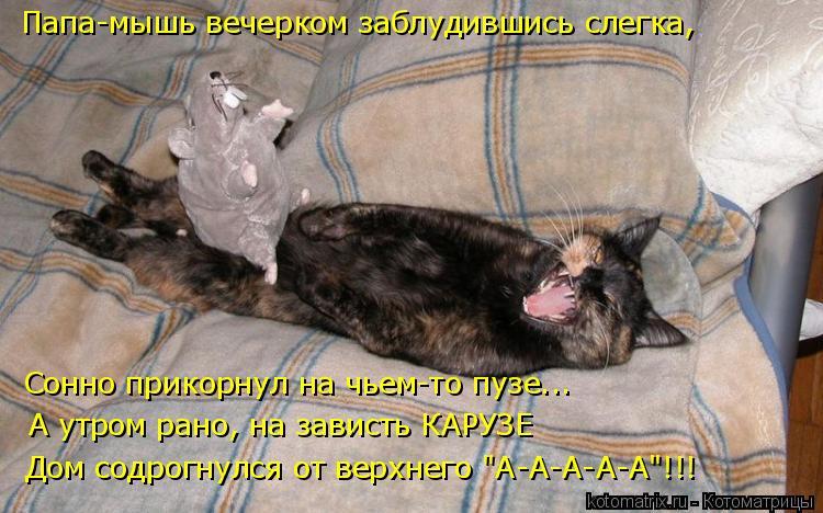 """Котоматрица: Папа-мышь вечерком заблудившись слегка, Сонно прикорнул на чьем-то пузе... А утром рано, на зависть КАРУЗЕ Дом содрогнулся от верхнего """"А-А-А-?"""