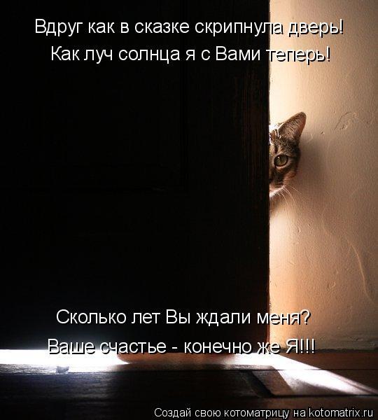 Котоматрица: Вдруг как в сказке скрипнула дверь! Как луч солнца я с Вами теперь! Сколько лет Вы ждали меня? Ваше счастье - конечно же Я!!!