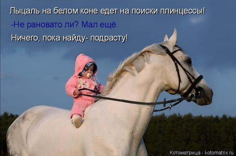 Котоматрица: Лыцаль на белом коне едет на поиски плинцессы! -Не рановато ли? Мал ещё. Ничего, пока найду- подрасту!