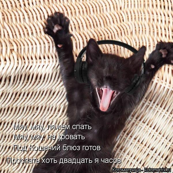 Котоматрица: Мяу, мяу, ляжем спать Мяу, мяу, на кровать Под Кошачий блюз готов Проспать хоть двадцать я часов