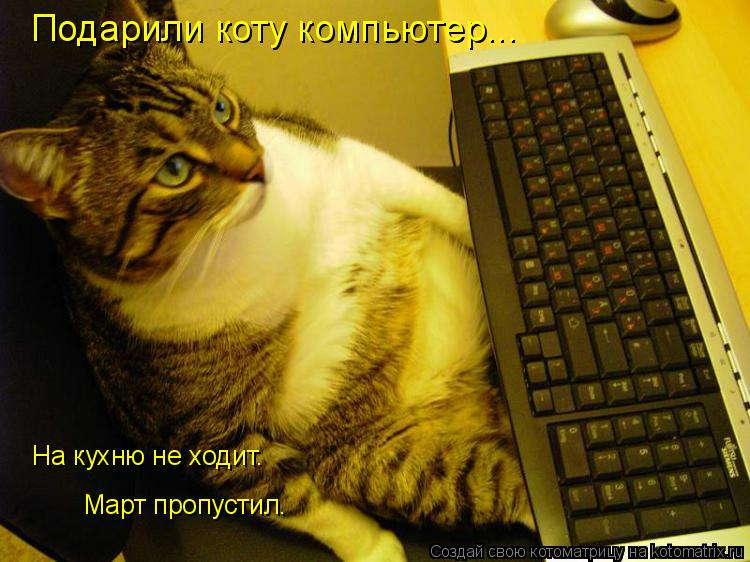 Котоматрица: Подарили коту компьютер... На кухню не ходит. Март пропустил.