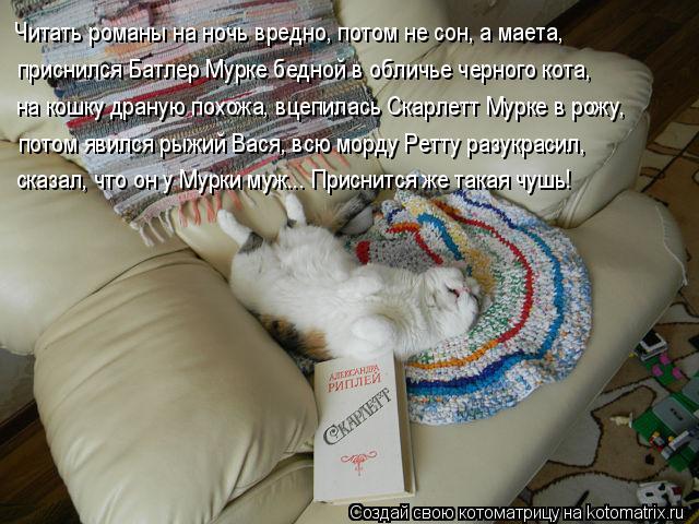 Котоматрица: Читать романы на ночь вредно, потом не сон, а маета,  приснился Батлер Мурке бедной в обличье черного кота, на кошку драную похожа, вцепилась